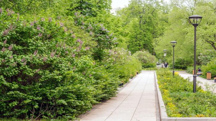 伊東造園が行う景観への取り組み